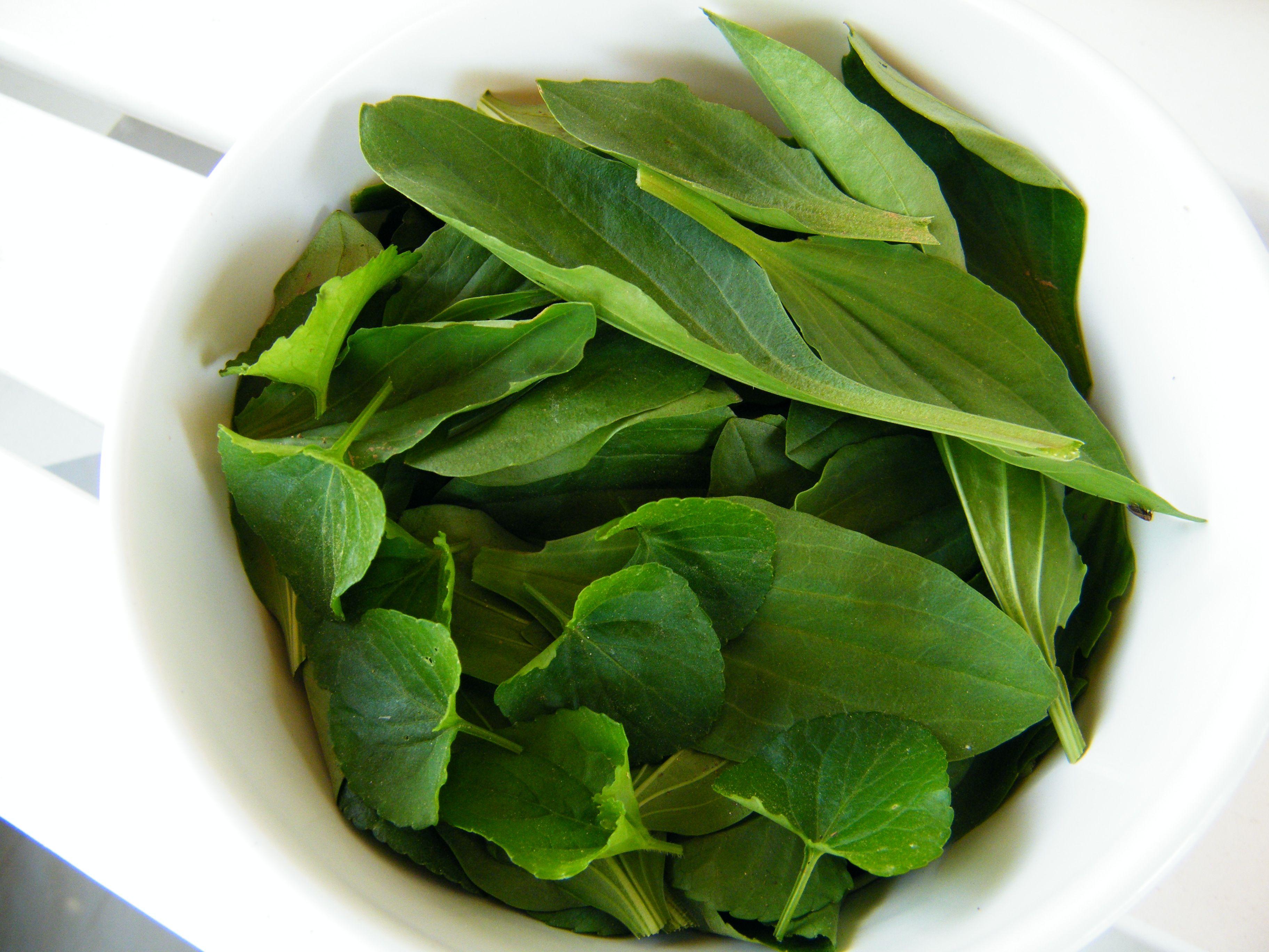 Najczęściej stosowanych roślin leczniczych środków i ich wykorzystania przedstawiono poniżej;