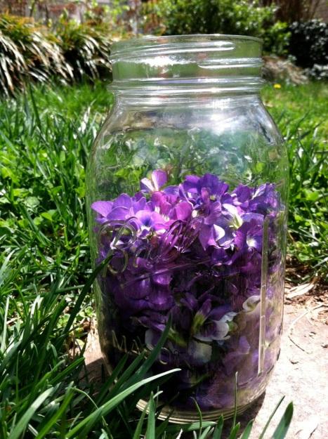 violetsyrup02