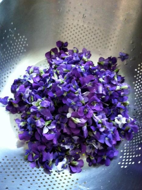 violetsyrup04